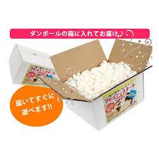 フェレット おもちゃ 遊び 梱包材