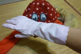 フェレット 対策 噛みグセ 手袋