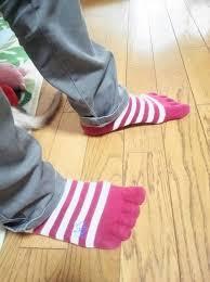 フェレット 噛みグセ 対策 靴下 スリッパ